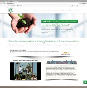 Website Design and SEO service